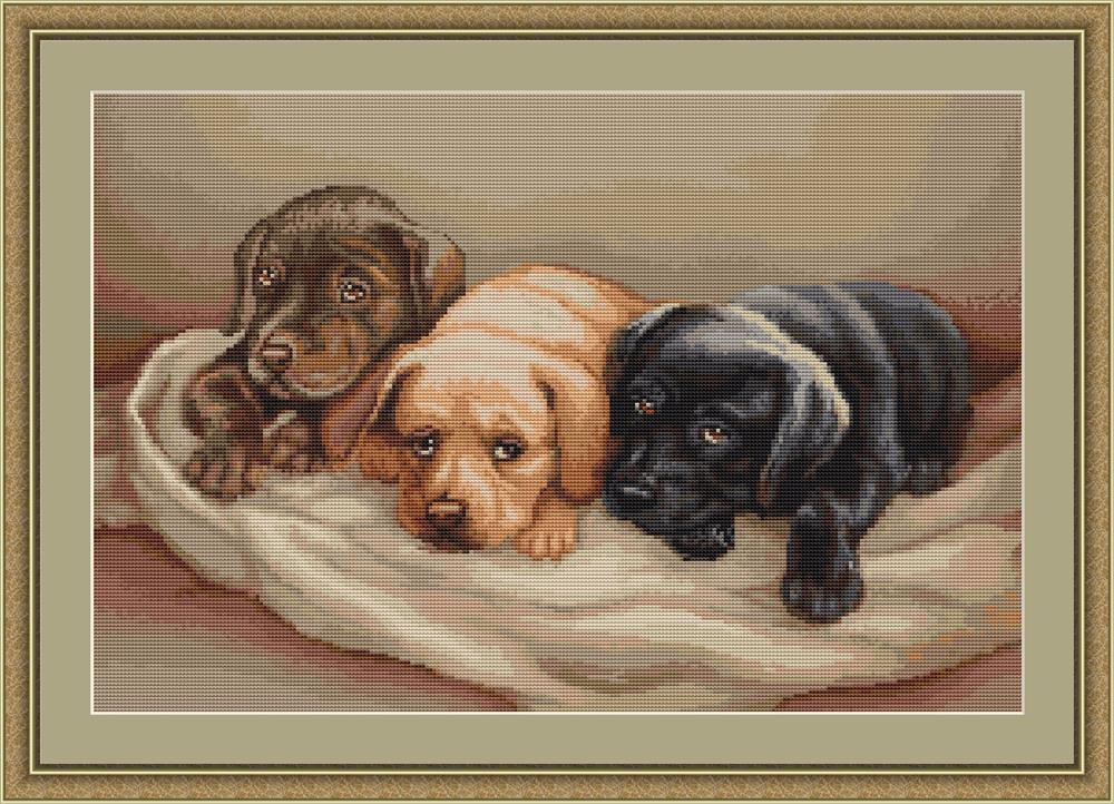 Three Puppies - Petit Point