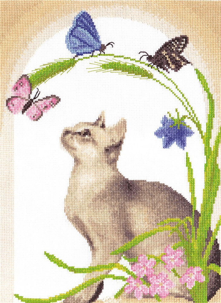 Cat and Butterflies