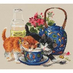 Kittens & Milk