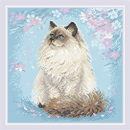 Meow-Zen